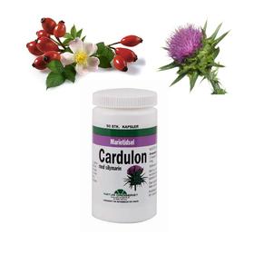 Cardulon
