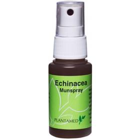 Echinacea munspray
