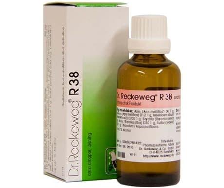 reckewegr38